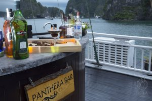 Panthera Bar