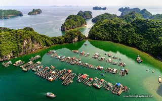 Halong Bay from the sky