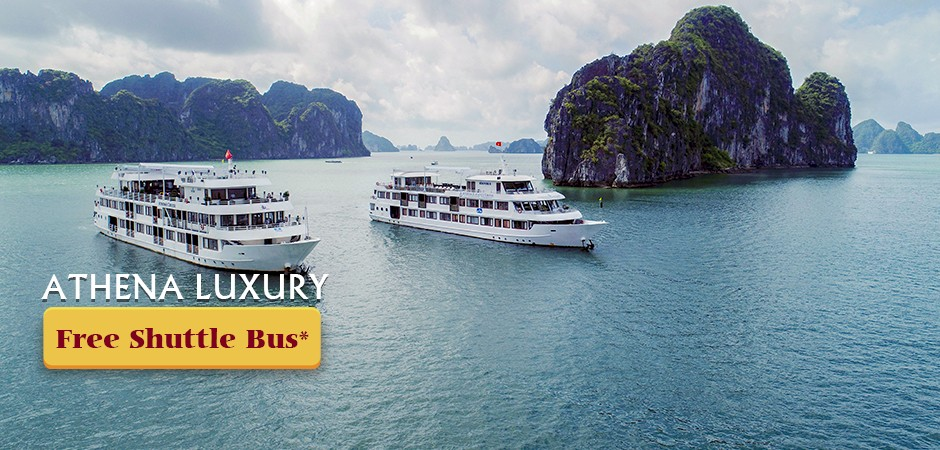 Athena Luxury CruiseFOC Limousine Shuttle bus for round trip in 2019 Detail
