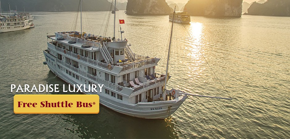 Paradise Luxury CruiseFree Shuttle Bus for round trip for all booking run in 2019Detail